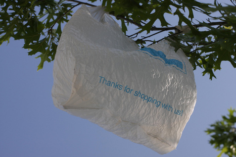 Do taxes on plastic bags make a difference? This video presents the evidence. | Criminology and Economic Theory | Scoop.it