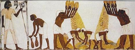 Parallels of Slavery   The Apocalypse Network   Scoop.it