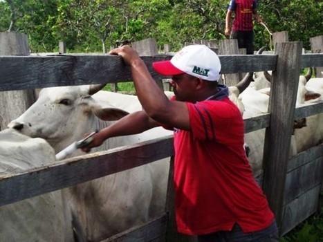 Comunidad Indígena El Plomo beneficiada con jornada social - Nueva Prensa de Guayana   Propuestas ecologicas   Scoop.it