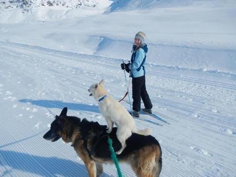 Travel - Skiing with April in March - A ski trip to Independence Mine   Arts & Entertainment   Scoop.it
