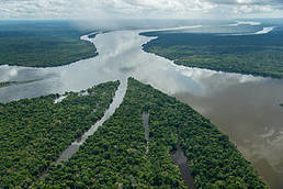 Over 80% of future deforestation confined to just 11 places   GarryRogers Biosphere News   Scoop.it