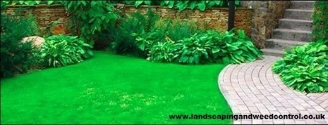 Hire Professional Landscape Contractor to Get Excellent Landscape Design   Landscaping and Weed Control   Scoop.it