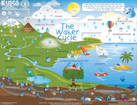 The Water Cycle for Kids and Students | Human Impact on the Earth | Scoop.it