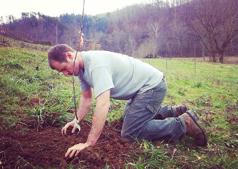 Blog : National Young Farmers Coalition | sustainablity | Scoop.it