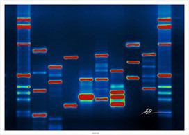 Is Innovation Part of Your Organisation's DNA? - Innovation for Growth | Humanize | Scoop.it