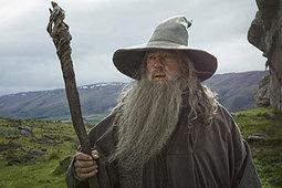 Waikato's hobbit motel for sale - Waikato Times   'The Hobbit' Film   Scoop.it