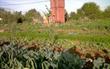 Agriculture urbaine à Casablanca: Quatre projets pilotes porteurs d'espoir | Agriculture urbaine et rooftop | Scoop.it