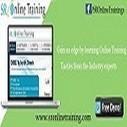 Best Informatica Online Training and OBIEE Tutorial Portal   OBIEE Training   Scoop.it