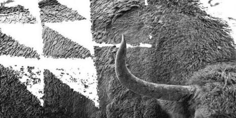 De Altamira a la Cueva Pintada   hoyesarte.com - Primer diario de arte y cultura en lengua española   Centro de Estudios Artísticos Elba   Scoop.it