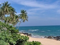 Teaching English in Sri Lanka | Blog About ESL | proffesseur  d'anglais | Scoop.it