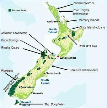 New Zealand A to Z | Scuba Diving | New Zealand Underwater | Scoop.it