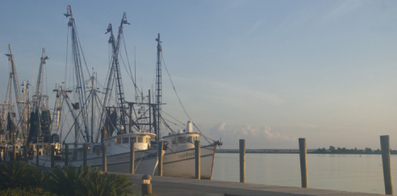 Scientists say dynamic, adaptive management of ocean resources would benefit ... - Summit County Citizens Voice | Marine Conservation and Ecology | Scoop.it
