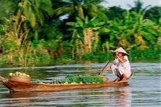 Sustainable farming key to food security » Vietnam Seafood News | Research Capacity-Building in Africa | Scoop.it