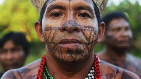 Anthropology: The sad truth about uncontacted tribes   Rainforest EXPLORER:  News & Notes   Scoop.it