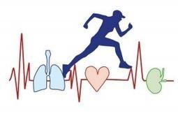 El cuerpo cuando corremos | Educación Física en El Carmen | Scoop.it