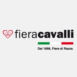 Meraviglia Ltd in november 2013   MERAVIGLIA Ltd   Scoop.it