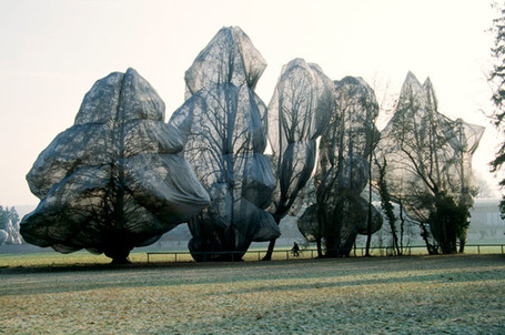 Wrapped Trees by Christo and Jeanne-Claude | Art Installations, Sculpture | Scoop.it
