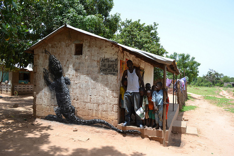 ROA in Galoya-THE GAMBIA | World of Street & Outdoor Arts | Scoop.it