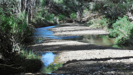 The EPA's struggle to combat water pollution | Grist | Geography News | Scoop.it