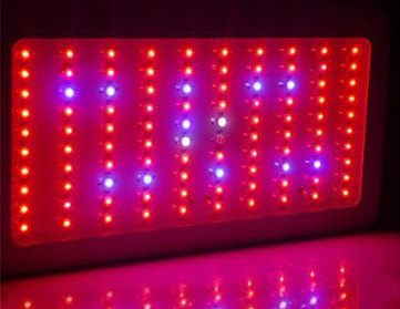 LED Grow Lights - Getting Started Guide | Grow Weed Easy | Grow Weed Easy | Scoop.it