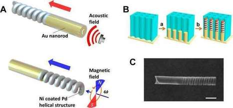 Fuel-free nanomotor is powered by ultrasound and magnetic fields | Innovation | Scoop.it