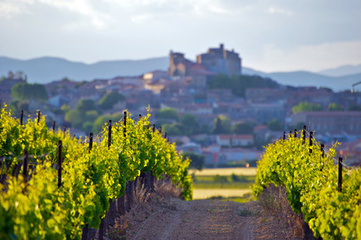 Les vins de Provence - CE niveau B1 | Remue-méninges FLE | Scoop.it