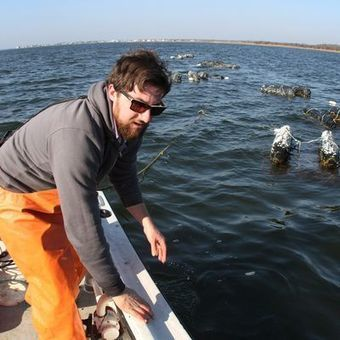 Shellfish industry slow to recover from Sandy | Hurricane Sandy Exploring Implications | Scoop.it