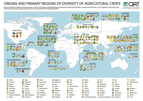 Where our food came from | Geography Education | Scoop.it