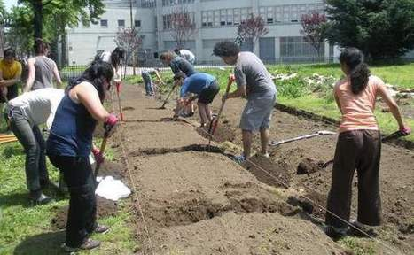 Farm School NYC's Urban Agriculture Students Dig into Their Second Year | City Spoonful | This Gives Me Hope | Scoop.it