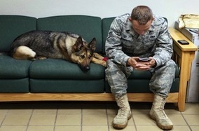 Stress post-traumatique : un numéro pour libérer la parole des soldats - Le Nouvel Observateur | Le stress | Scoop.it