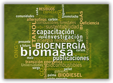 Red Mexicana de Bioenergía | Systemic Innovation & Sustainable Development | Scoop.it