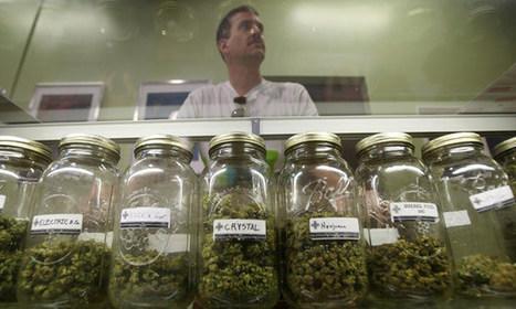 Medical Marijuana: Benefits, Risks & State Laws   Veooz   Marijuana Facts   Scoop.it