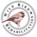 Wild Bird Rehabilitation | Pedegru | Animals Make Life Better | Scoop.it