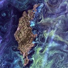 Las cinco mejores fotos de la Tierra (como obras de arte) | Genética humana | Scoop.it