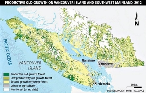 Maps show impact of overcutting old-growth forests, conservation groups say - News - Times Colonist | Sustain Our Earth | Scoop.it