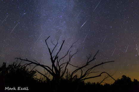 Meteor Shower Cameras Scan Night Sky to Study Near-Earth Objects | general everyday knowledge | Scoop.it