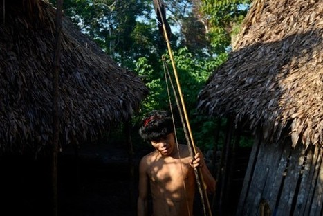 Who is Fiercer: Yanomamö Indians or Dueling Tribes of Anthropologists? | enjoy yourself | Scoop.it