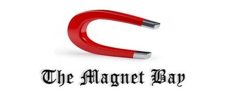 The Pirate Bay Switches from Torrents to Untraceable Magnet Links | Global Brain | Scoop.it
