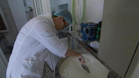 Cheese: China's unexpected new craving | International Business | Scoop.it
