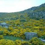 La Reserva de la Biosfera de La Rioja impulsa su crecimiento - Actualidad Medio Ambiente   Actualidad forestal cerca de ti   Scoop.it
