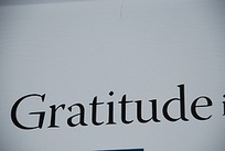 About Thanksgiving: Gratitude, Leadership, and Performance - Forbes | Female Leadership | Scoop.it