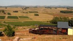 #Uruguay's #boutique #wineries | Le It e Amo ✪ | Scoop.it