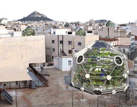 Votre géode d'abondance sur les toits: optimisé pour nourrir quatre familles de quatre personnes toute l'année. | The Architecture of the City | Scoop.it