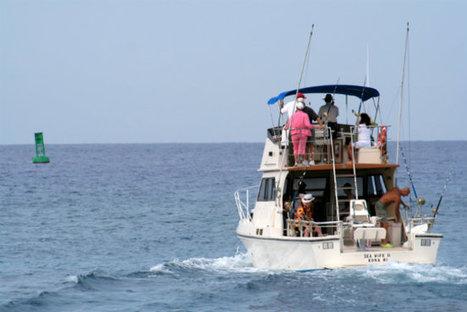 Beat the Heat with Charter Fishing | Hooked Up Isla Morada | Scoop.it