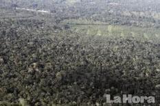 Ecuador / Indígenas impiden paso de Gobierno en la Amazonía   MOVUS   Scoop.it