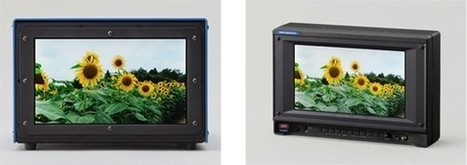 world's smallest 4K display | Cinematography | Scoop.it
