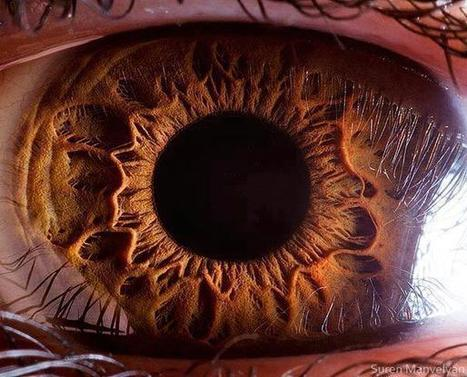 These 50 Most Insane Facts About The Eye Will Surely Blow Your Mind | The Most Interesting Topics | Scoop.it
