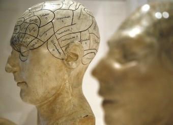 Le cerveau n'a pas de genre   Recherche universitaire dans le domaine du genre   Scoop.it