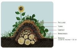 La Création de Buttes - Fermes d'Avenir | Permaculture, Homesteading, Ecology, & Bio-Remediation | Scoop.it