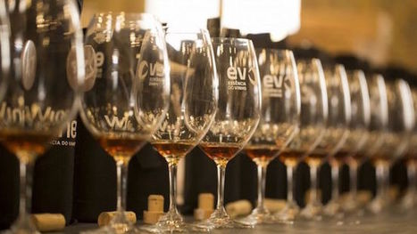 TOP 10 Portuguese Wines - Your Deli news | Deli news - Visit Portugal by flavours | Scoop.it